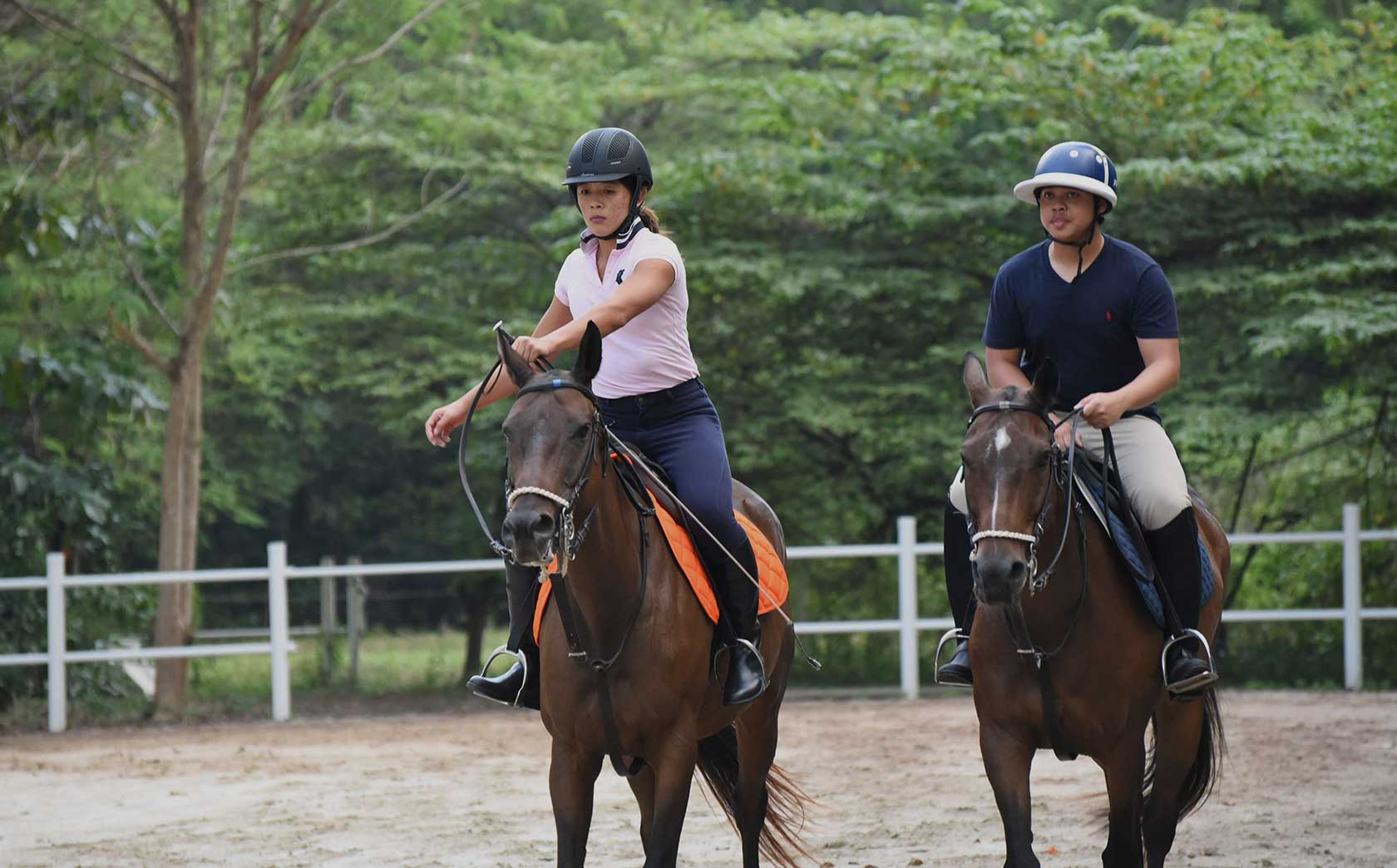 colts polo and riding lessons